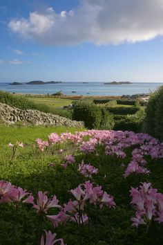 Are There Cars On St Martin S Scilly Isles