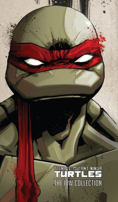 Teenage Mutant Ninja Turtles: The IDW Collection #1 - Volume 1 (Issue)