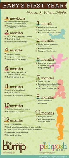 Baby's First Year - Senses & Motor Skills