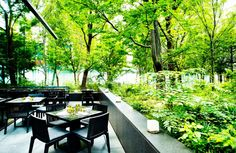 home interior dream Green Cafe, Outdoor Dining, Outdoor Decor, Garden Borders, Cafe Design, Cafe Restaurant, Staycation, Places To Go, Beautiful Places