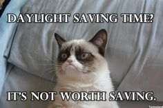 Funny pictures about Grumpy Cat is feeling poetic. Oh, and cool pics about Grumpy Cat is feeling poetic. Also, Grumpy Cat is feeling poetic. Grumpy Cat Quotes, Meme Grumpy Cat, Gato Grumpy, Grumpy Kitty, Kitty Cats, Meme Comics, Funny Cats, Funny Animals, Funniest Animals