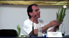 VÍDEO ALOE VERA PROPIEDADES MEDICINALES Y REMEDIOS CASEROS, Francisco Julián ecoagricultor.com