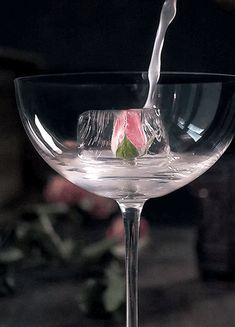 Beautifully delicious GIF Cocktail Glass, Cocktail Drinks, Alcoholic Drinks, Beverages, Cocktails, Romantic Gif, Cinemagraph, Moving Pictures, Gif Instagram