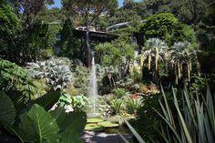 Giardini La Mortella on Isola d'Ischia in the Bay of Naples, Italy.