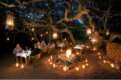 A magical dinner experience: boma in the ancient milkwood forest in the Grootbos Nature Reserve, South Africa Jungle Resort, Forest School Activities, Game Lodge, Outdoor Restaurant, Restaurant Bar, Backyard Lighting, Game Reserve, Find Hotels, Spa Treatments