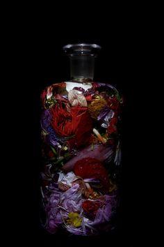 Bottle Flower - Makoto Azuma