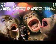 Happy Birthday Funny Wishes, Happy Birthday Funny Messages, Happy Birthday Funny Quotes, Happy Birthday Funny, Happy Birthday Wishes Funny