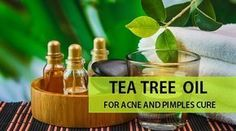how to use tea tree oil for pimple cure and acne marks #TeaTreeOilforacne