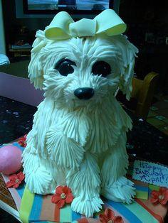 Maltese By Robynlovescake Via Flickr Gravity Cake Puppy Dog Cakes