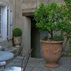 Garden Urns, Garden Planters, Small Gardens, Outdoor Gardens, French Courtyard, Italian Garden, European Garden, Pot Jardin, Citrus Trees