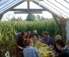 Unique dinner in a POP-UP Italian restaurant in the middle of a cornfield.    Good Food, Amazing, Cozy and Unique