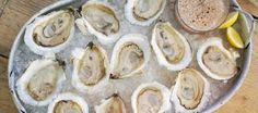 Image result for oysters on ice