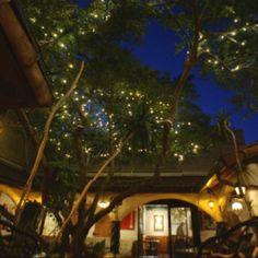 Radha Kalachandji Hare Krishna Restaurant, Dallas