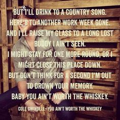 Baby you aint worth the whiskey! Love love love this song!!!