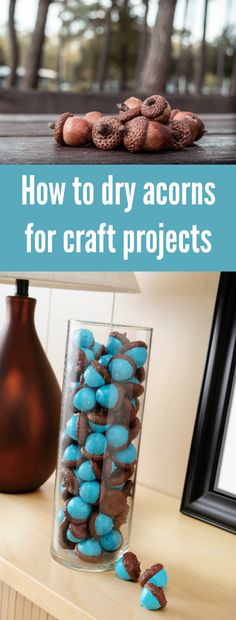 Are you ready for autumn crafts? Learn how to dry acorns for your fall projects! Prevent worms and find out how to preserve the acorns for decor. via @modpodgerocks