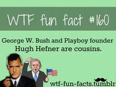 wtf fun fact #1