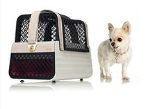 Cheap Crash Tested Dog Carry on for Small Dogs | Penthouse Los Angeles | Safe Transportation of Small Dogs in a Car | Safe Dog Carrier | 4 Pets https://dogcarseat.review/cheap-crash-tested-dog-carry-on-for-small-dogs-penthouse-los-angeles-safe-transportation-of-small-dogs-in-a-car-safe-dog-carrier-4-pets/