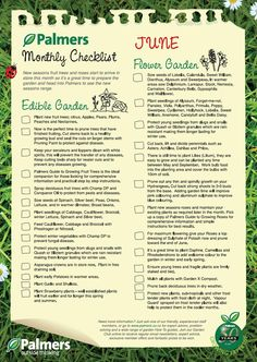 July gardening nz tips july is a great month to prepare for Garden maintenance checklist
