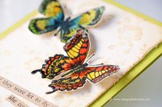 Tim Holtz stamps. Flutter stamp set. Distress markers. Project by Wanda Guess