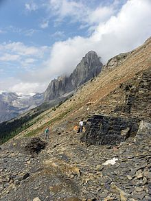 Burgess Shale ! One of the most celebrated fossil fields in the world. But known by the public ?