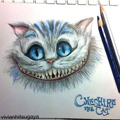 Car Hood Decals Cheshire Cat Full Color Sticker Vehicle Wraps Auto Decals BB36