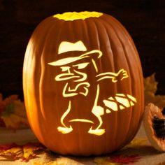 Funny Pumpkin Carvings, Cat Pumpkin Carving, Halloween Pumpkin Carving Stencils, Halloween Pumpkin Designs, Amazing Pumpkin Carving, Pumpkin Carving Templates, Pumpkin Template, Halloween Pumpkins, Halloween Ideas