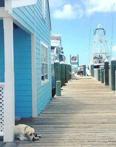 Bahamas - gorgeous image