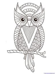 owl coloring pages, printable owl coloring pages, free owl