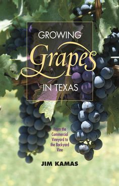 Growing Grapes in Texas by Jim Kamas Central Texas Gardener