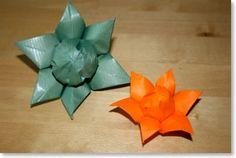 flower has six petals
