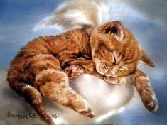 S.Naumovich. Pure angel, when he is asleep ...