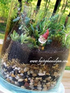 Little terrarium. Saw glass containers like this at HomeGoods.