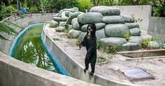 Close the Quinta da Boa Vista Zoo. Animals drawn and abused  http://www.sosvox.org/en/petition/situation-months-quinta-shame-remains.html?utm_campaign=situation_months_quinta_shame_remains&utm_source=facebook&utm_medium=organic