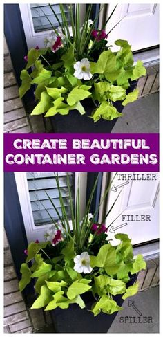 Love container gardens but think they're too hard to create? My simple method will show you the easy step-by-step. Beautiful gardens are in your future!