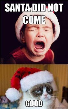 Grumpy Cat- Santa  #GrumpyCat #memes #lol