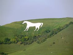Wiltshire White Horse ~ Wiltshire, England  The Westbury white horse is the oldest of the Wiltshire horses.