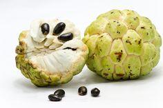 A Fruta noni emagrecer | http://saudenocorpo.com/fruta-noni-emagrecer/