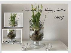 DIY: Frühling im Glas-Frühlingsdeko Narzissen, Natur pur / Deco Jana - YouTube