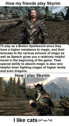 Playing Skyrim  - funny pictures #funnypictures