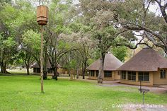 The Kruger National Park Safari is a quick and affordable way to experience the Kruger National Park and all the natural wonders it has to offer. Round House Plans, Small House Plans, Kruger National Park Safari, National Parks, Backyard Covered Patios, African Interior Design, Hut House, Thatched House, Beach Bungalows