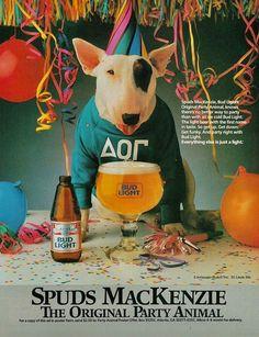 SPUDS MacKENZIE... The Original Party Animal...