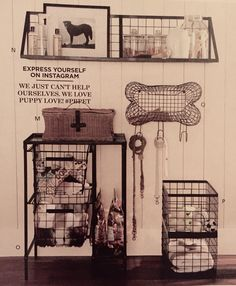 Pet station by Pottery Barn