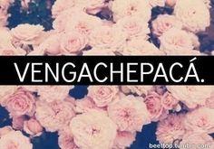 """Vengachepacá es en realidad """"véngase para acá"""" una frase muy mexicana utilizada para decirle al ser amado que lo quiere muy cerca #Mexico"""