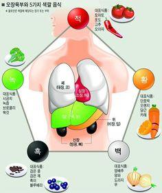 오색오미..건강해지고 싶다면 5가지 색깔과 5가지 맛의 음식을 먹자..오장육부와 5가지 색깔 음식 :: 봉리브르