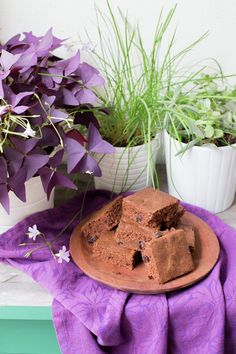 Easy Brownies with Cocoa Powder - Pilar's Chilean Food & Garden Chilean Recipes, Cuban Recipes, Honey Recipes, Chilean Food, Latin American Food, Latin Food, Delicious Chocolate, Chocolate Recipes, Cocoa Powder Brownies