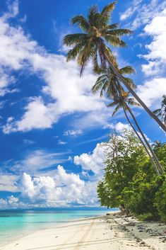 The beauty of nature — lsleofskye: Tropical Paradise Beautiful Places To Travel, Beautiful Beaches, Paradise Pictures, Beaches Turks And Caicos, Atlantis Bahamas, Hawaii Pictures, Ocean Wallpaper, Scenery Photography, Tropical Beaches