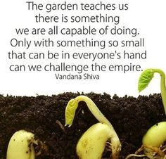 The garden teaches us. Get Up And Grow, Biodynamic Gardening, Vandana Shiva, Farm Quotes, Garden Quotes, Garden Sayings, Save Our Earth, Feminine Mystique, Small Space Gardening