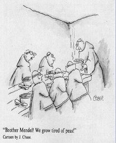 Science jokes biology genetics nerd humor 58 ideas for 2019 Biology Jokes, Chemistry Jokes, Ap Biology, Science Cartoons, Science Puns, Science Posters, Biology Classroom, Teaching Biology, Classroom Memes