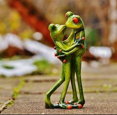 Perhaps you have had problems in wanting to love again? This was me only a year ago. Funny Frogs, Cute Frogs, Frog Pictures, Love Pictures, Beautiful Pictures, Romantic Love, Beautiful Love, Romantic Ideas, Funny Animals