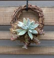 succulent craft - Google Search